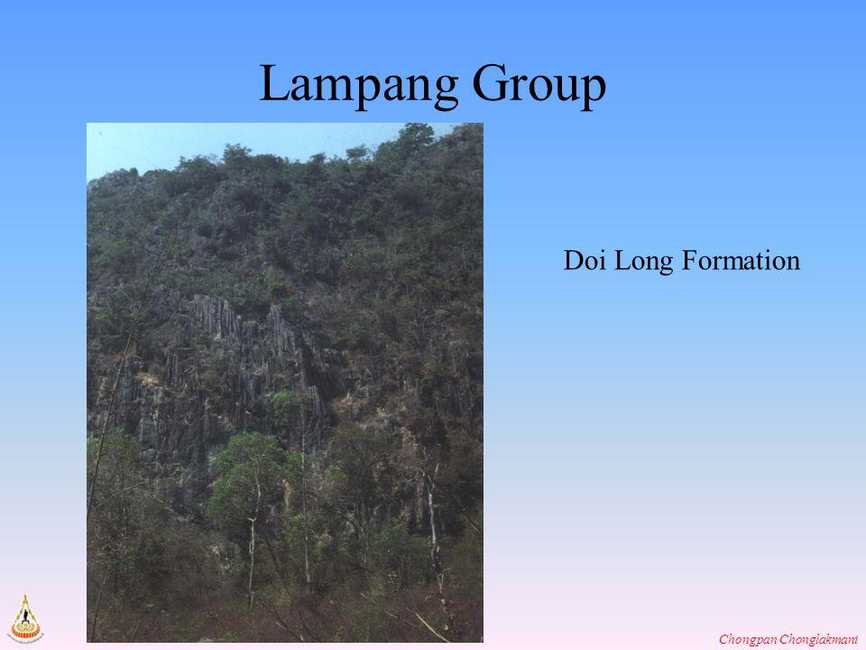 Lampang Group Doi Long Formation