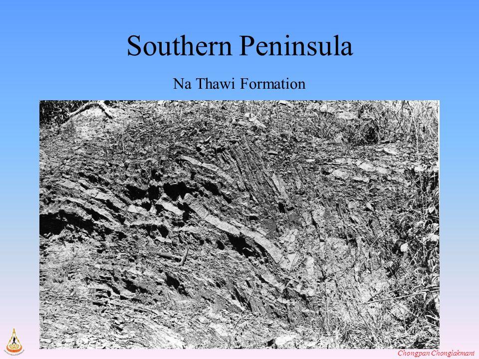 Southern Peninsula Na Thawi Formation