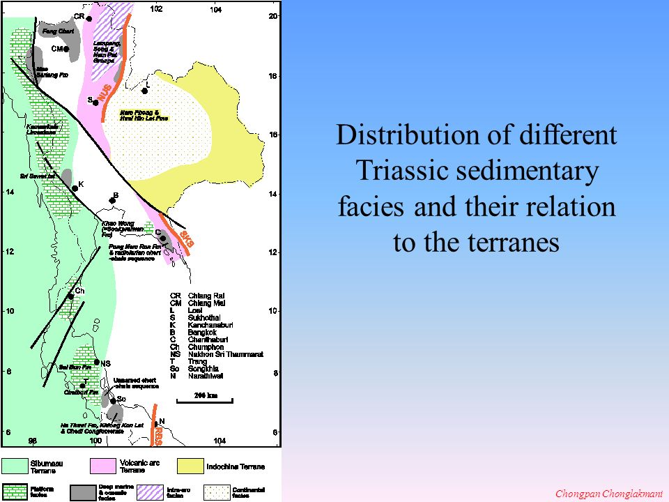 Distribution of different Triassic sedimentary facies and their relation to the terranes