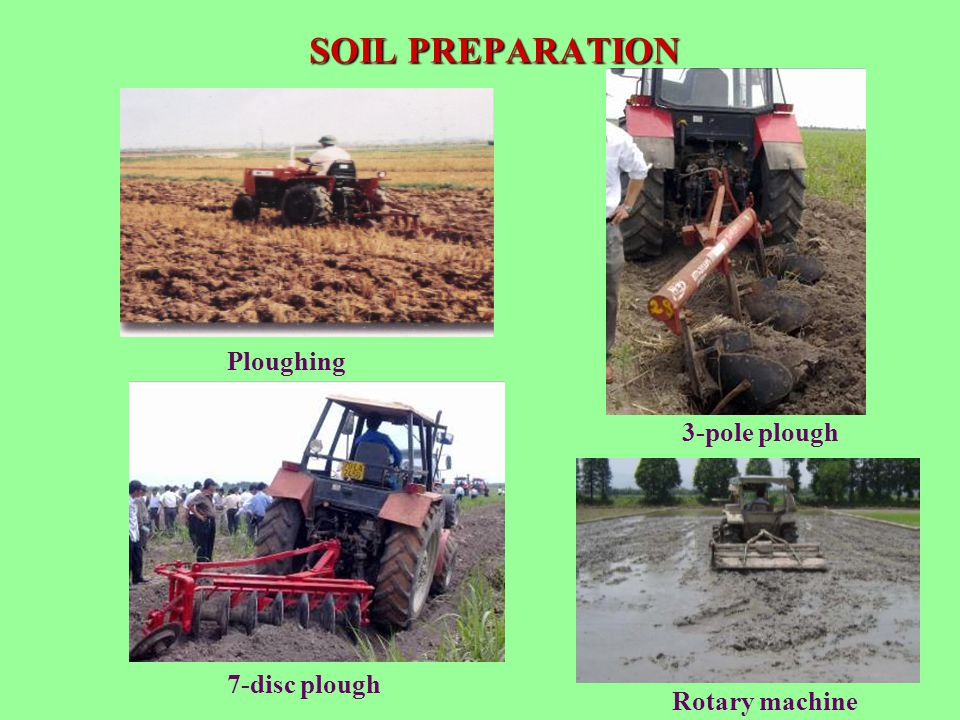 SOIL PREPARATION Ploughing 3-pole plough 7-disc plough Rotary machine