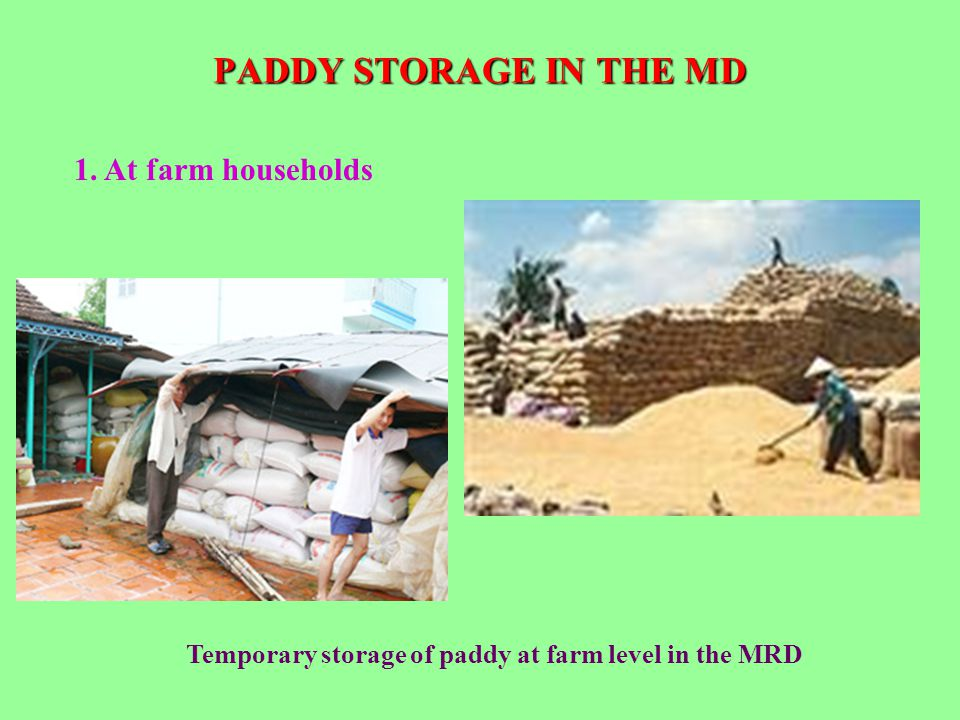 PADDY STORAGE IN THE MD 1. At farm households