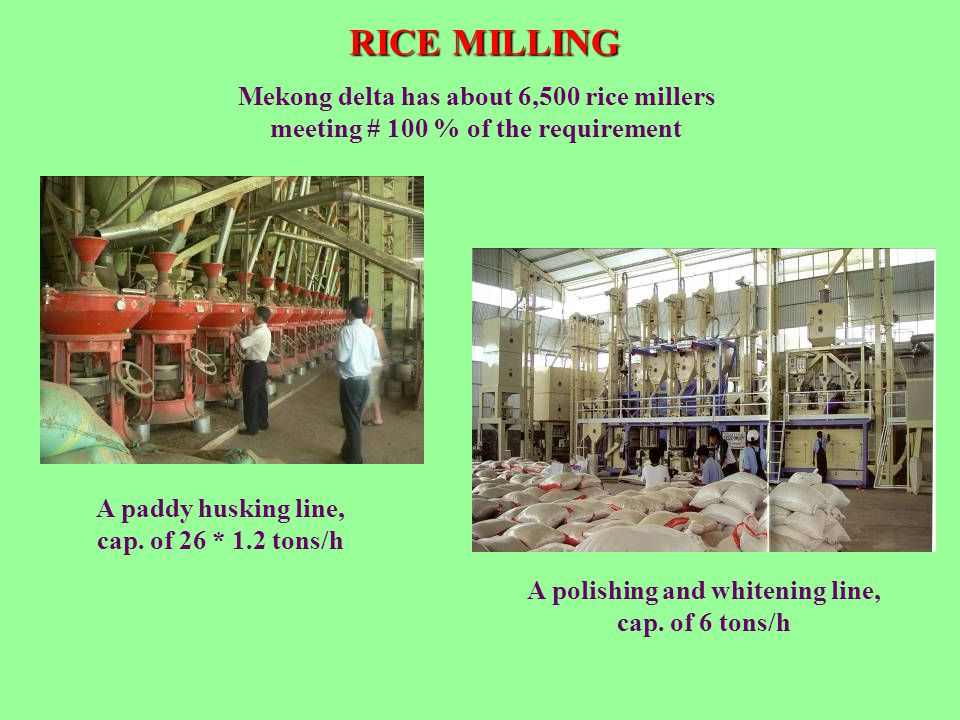 RICE MILLING Mekong delta has about 6,500 rice millers meeting # 100 % of the requirement. A paddy husking line, cap. of 26 * 1.2 tons/h.