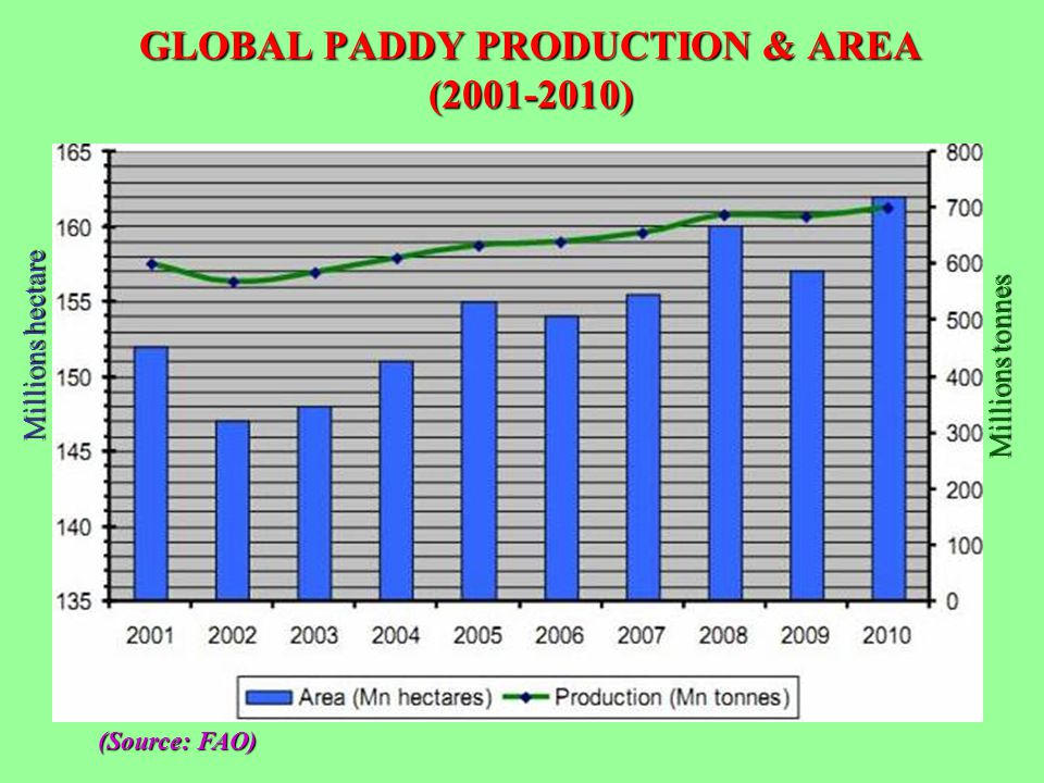 GLOBAL PADDY PRODUCTION & AREA (2001-2010)