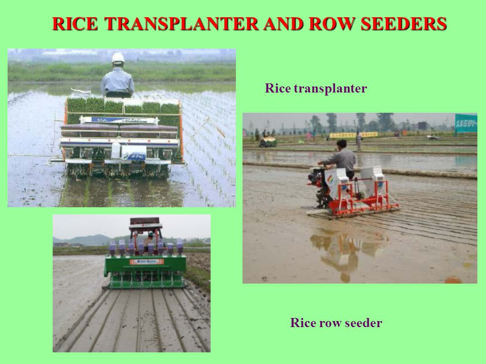 RICE TRANSPLANTER AND ROW SEEDERS