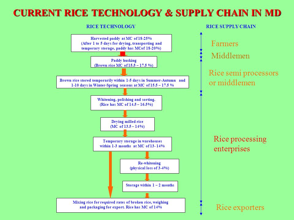 CURRENT RICE TECHNOLOGY & SUPPLY CHAIN IN MD