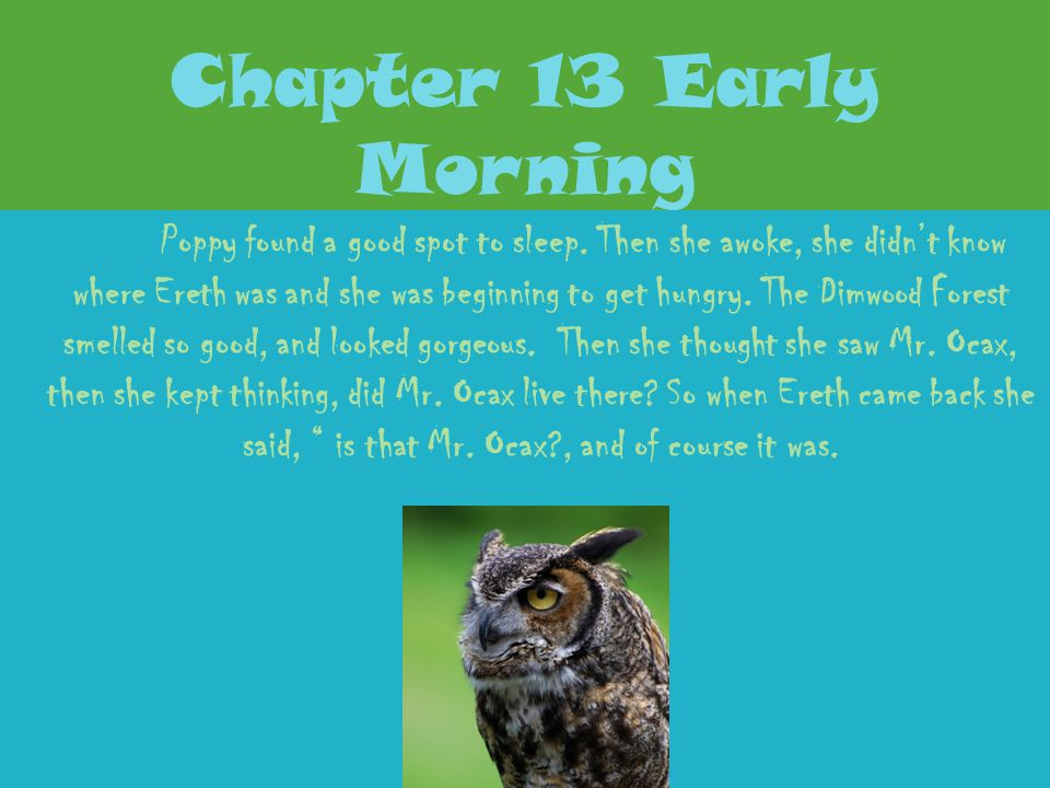 Chapter 13 Early Morning