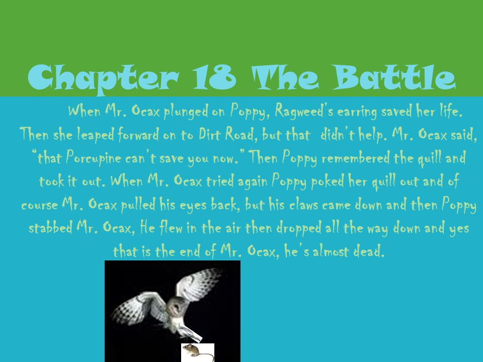 Chapter 18 The Battle
