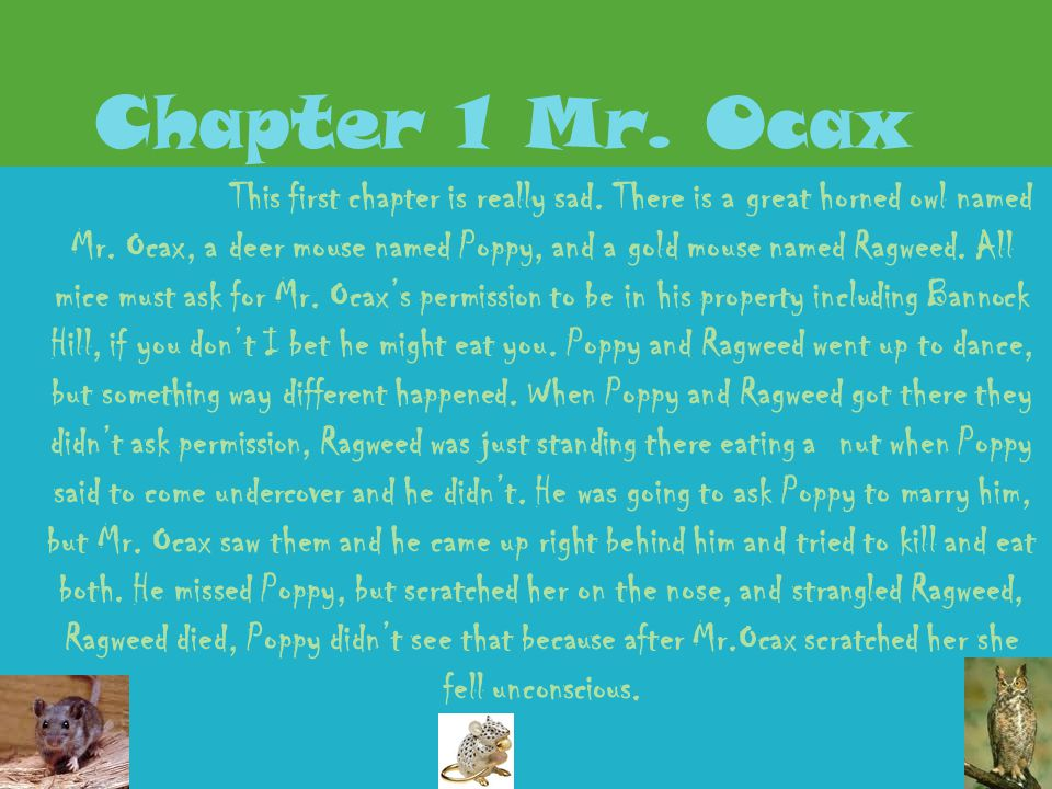 Chapter 1 Mr. Ocax