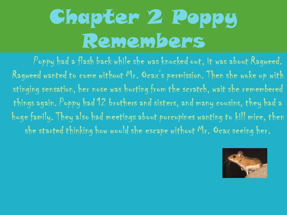 Chapter 2 Poppy Remembers
