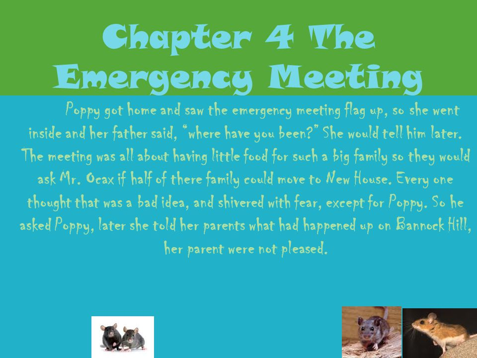 Chapter 4 The Emergency Meeting
