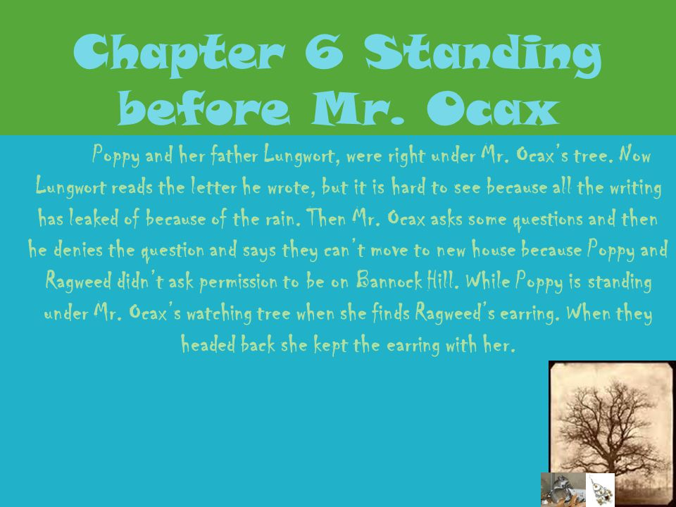 Chapter 6 Standing before Mr. Ocax