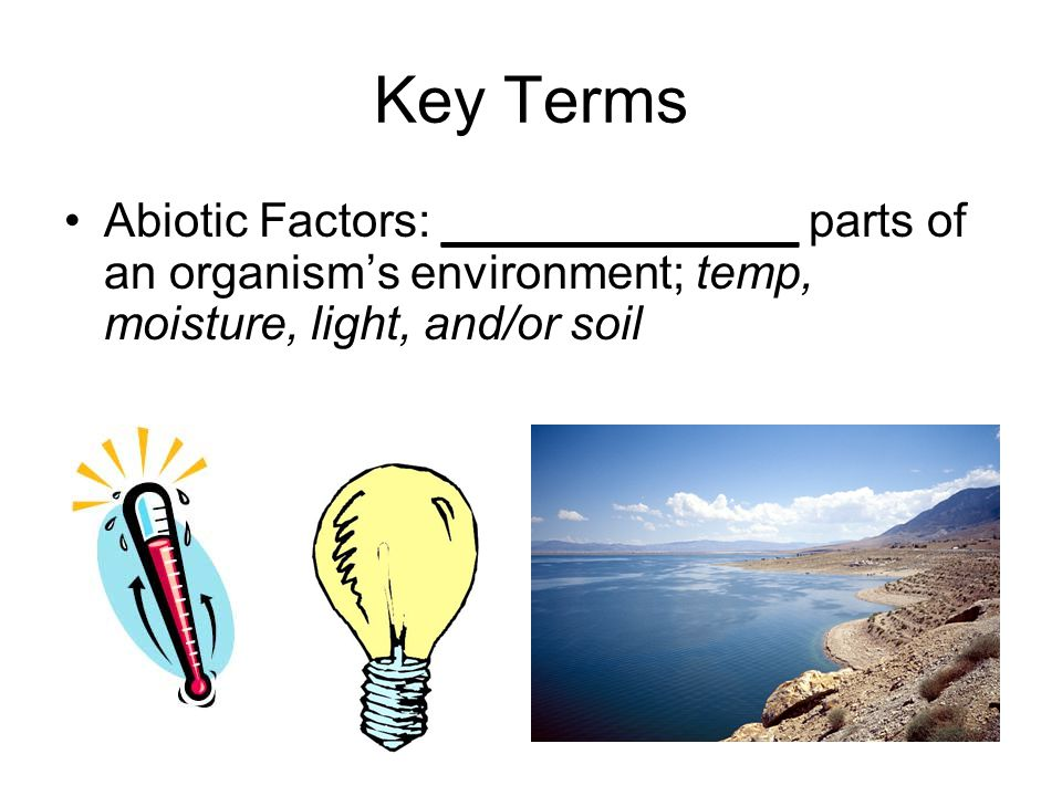 Key Terms Abiotic Factors: ____________ parts of an organism's environment; temp, moisture, light, and/or soil.