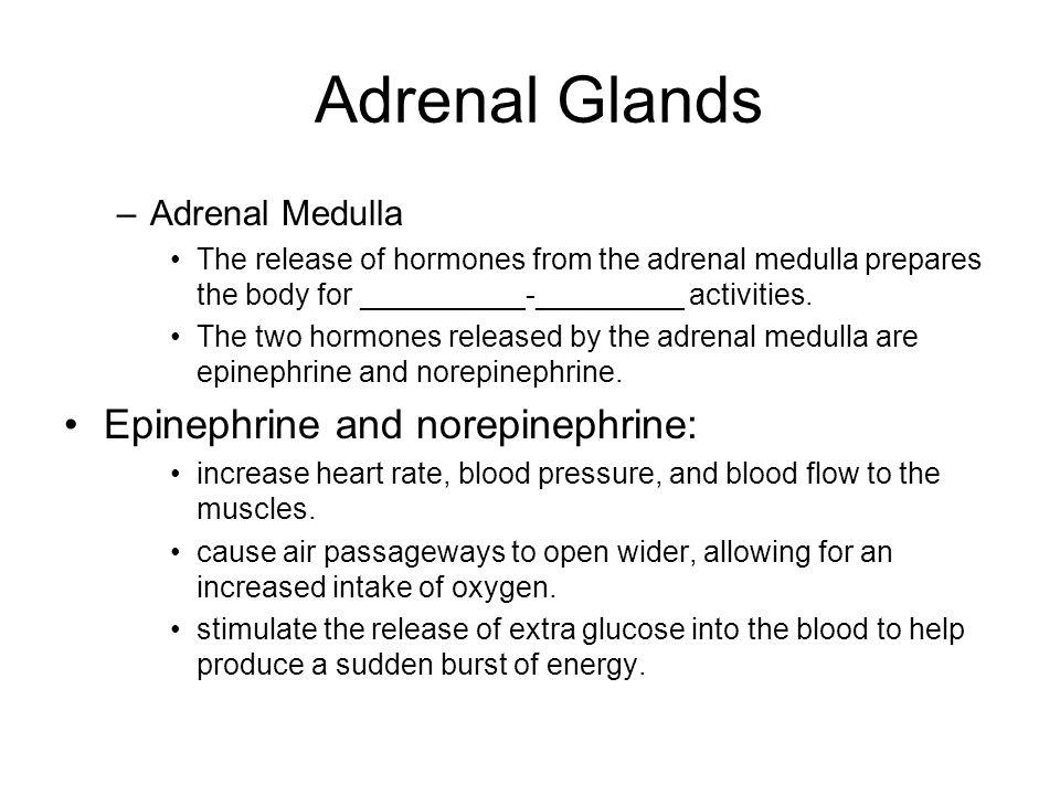 Adrenal Glands Epinephrine and norepinephrine: Adrenal Medulla