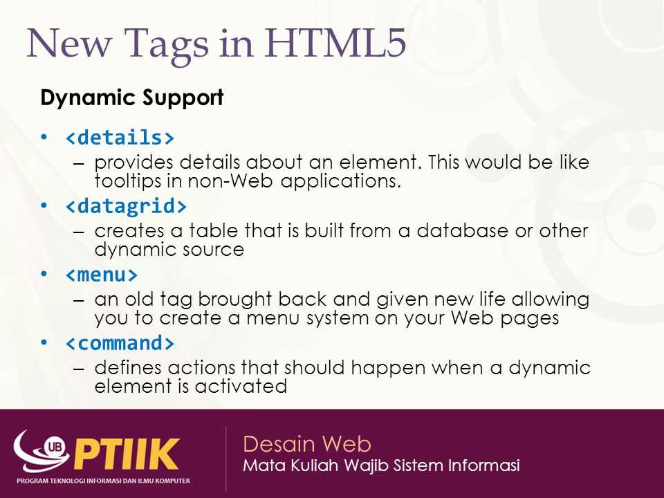 New Tags in HTML5 Dynamic Support <details> <datagrid>