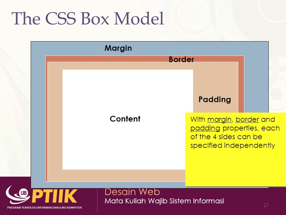 The CSS Box Model Margin Border Padding Content