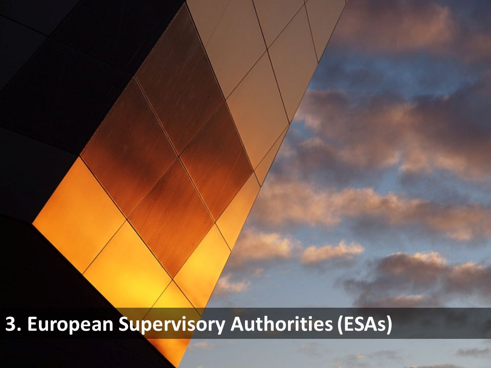 3. European Supervisory Authorities (ESAs)