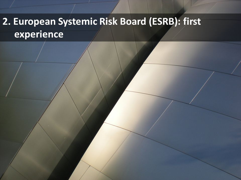 2. European Systemic Risk Board (ESRB): first experience