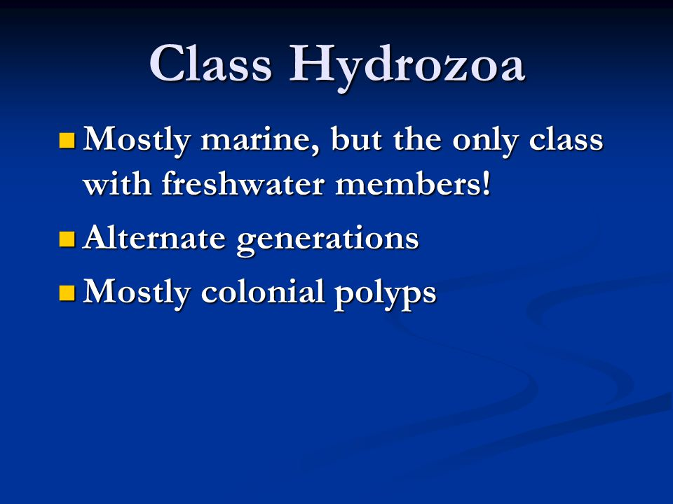 Class Hydrozoa Mostly marine, but the only class with freshwater members.