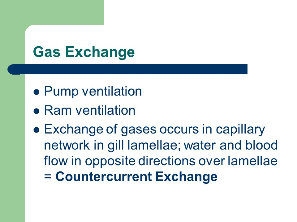 Gas Exchange Pump ventilation Ram ventilation