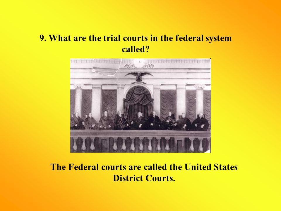 9. What are the trial courts in the federal system called