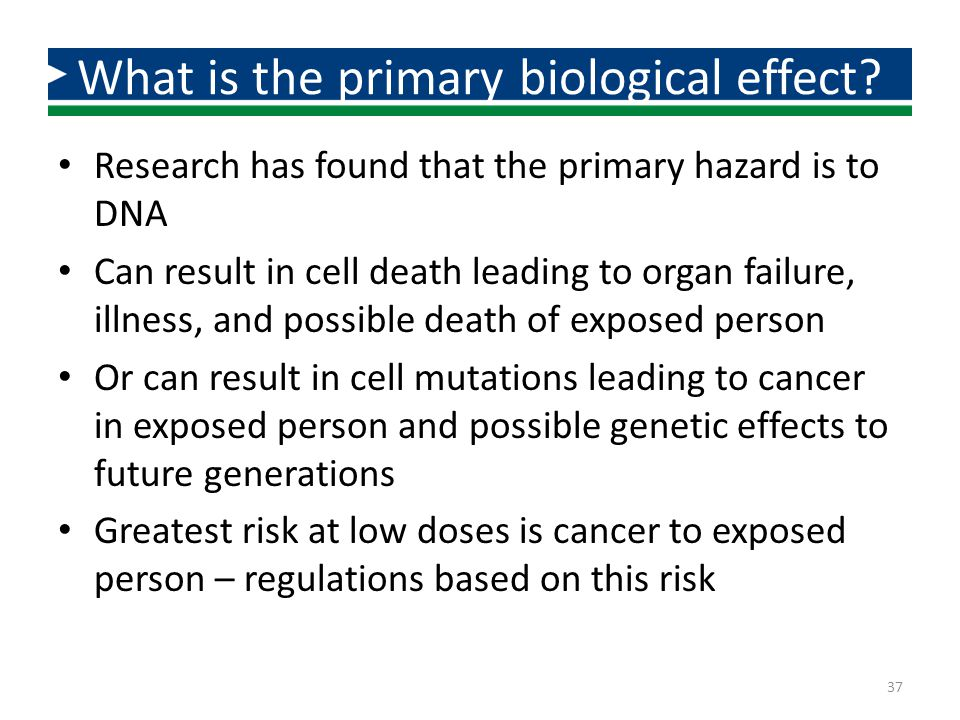 What is the primary biological effect