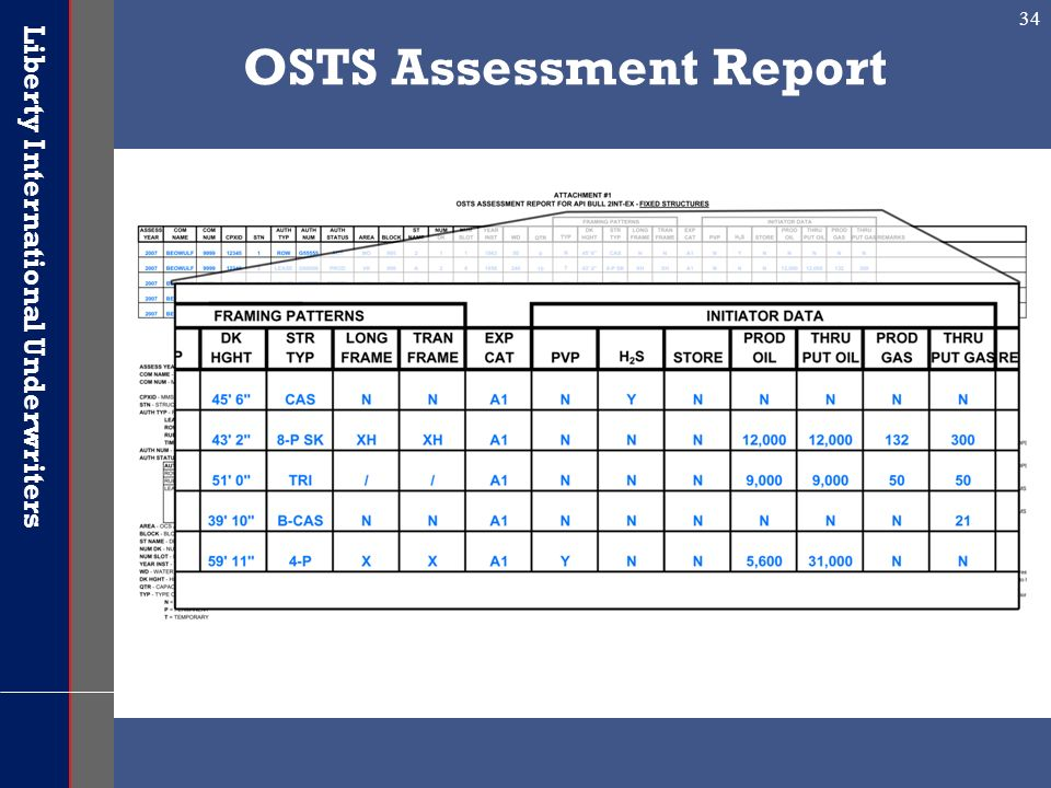 OSTS Assessment Report