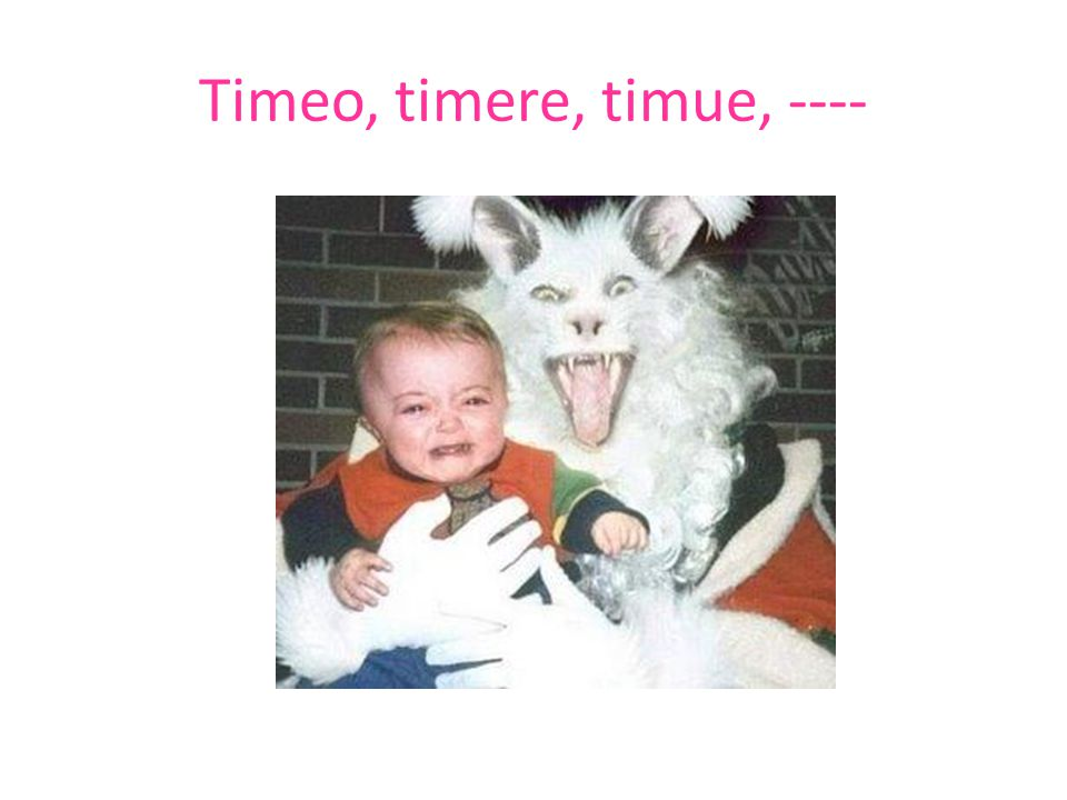 Timeo, timere, timue, ----