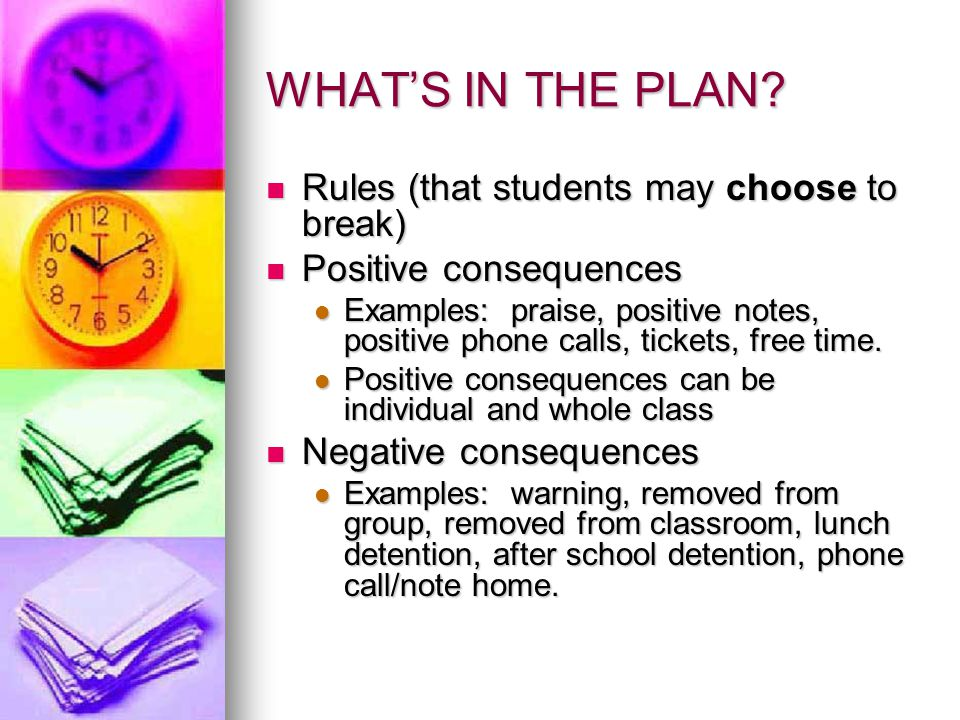 WHAT'S IN THE PLAN Rules (that students may choose to break)