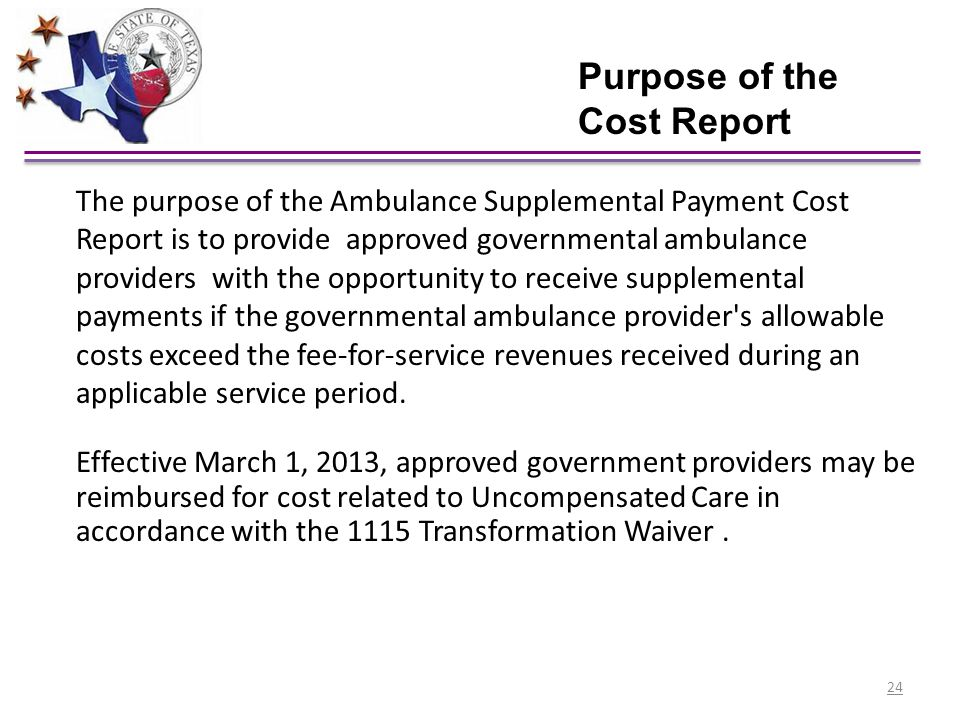 Purpose of the Cost Report