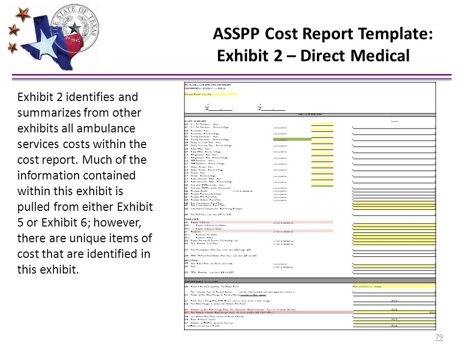 ASSPP Cost Report Template: Exhibit 2 – Direct Medical