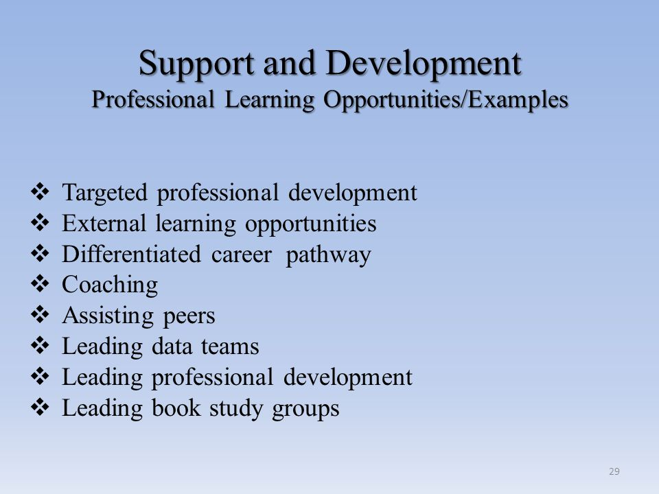 Support and Development Professional Learning Opportunities/Examples