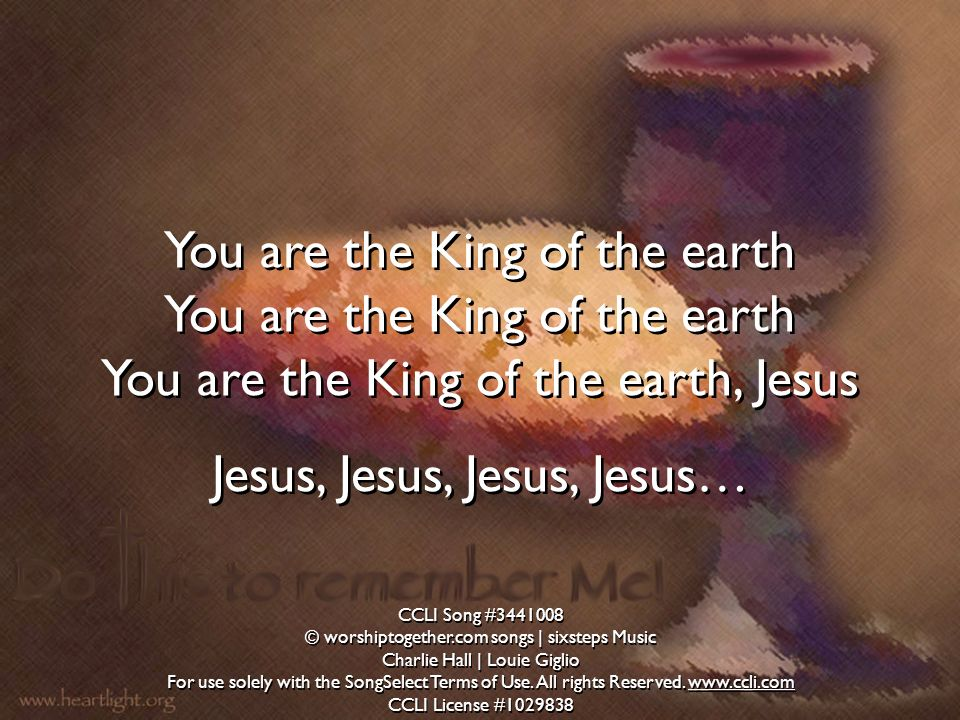 You are the King of the earth You are the King of the earth, Jesus