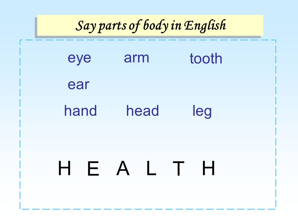 Say parts of body in English