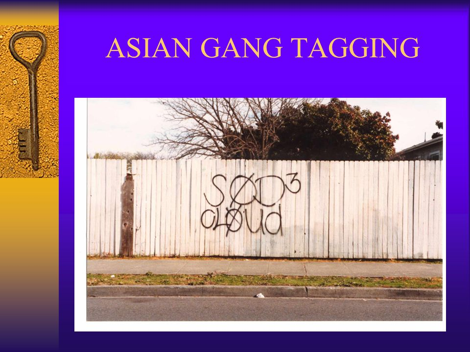 ASIAN GANG TAGGING