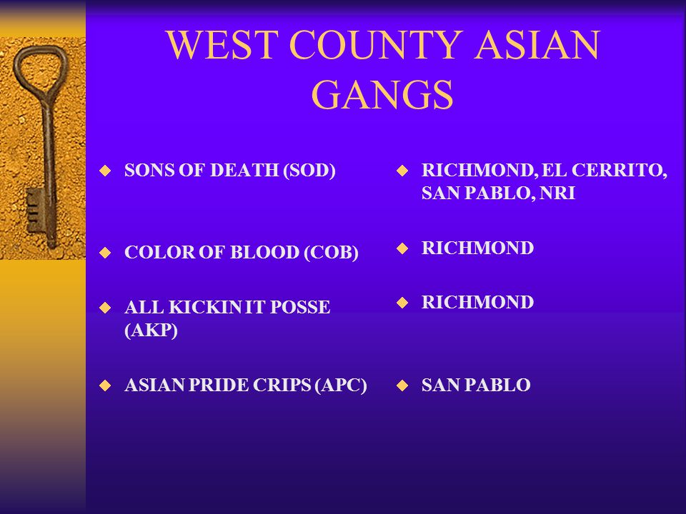 WEST COUNTY ASIAN GANGS