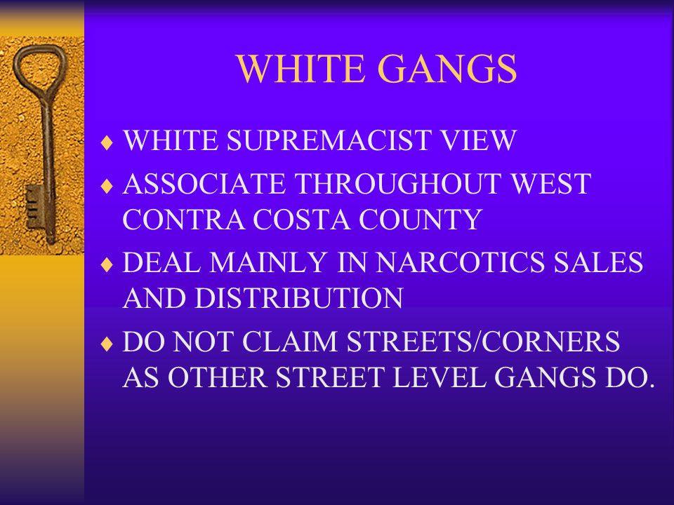 WHITE GANGS WHITE SUPREMACIST VIEW