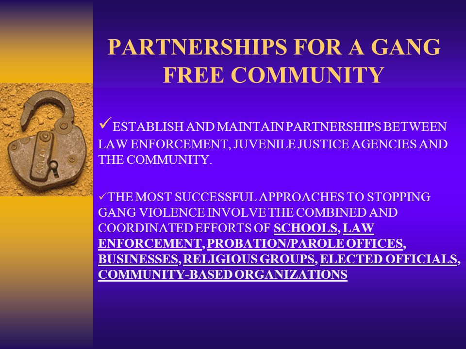 PARTNERSHIPS FOR A GANG FREE COMMUNITY