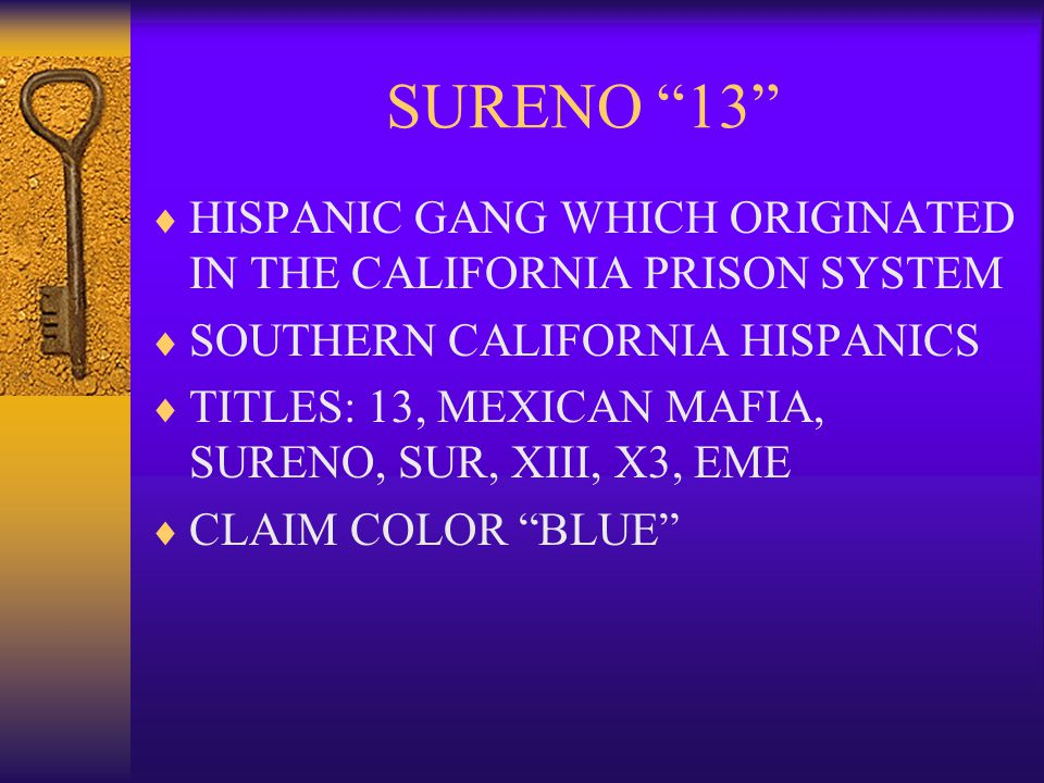 SURENO 13 HISPANIC GANG WHICH ORIGINATED IN THE CALIFORNIA PRISON SYSTEM. SOUTHERN CALIFORNIA HISPANICS.
