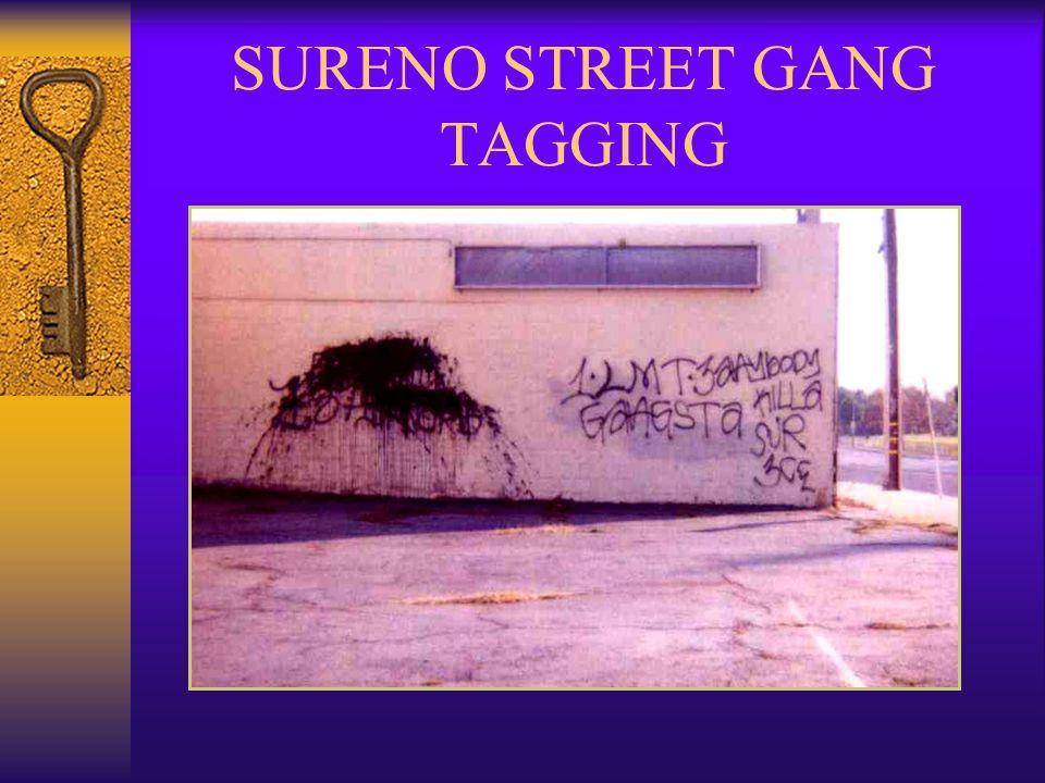 SURENO STREET GANG TAGGING