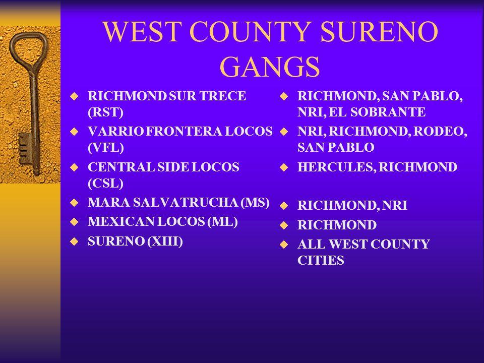 WEST COUNTY SURENO GANGS