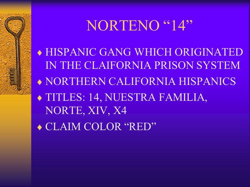 NORTENO 14 HISPANIC GANG WHICH ORIGINATED IN THE CLAIFORNIA PRISON SYSTEM. NORTHERN CALIFORNIA HISPANICS.