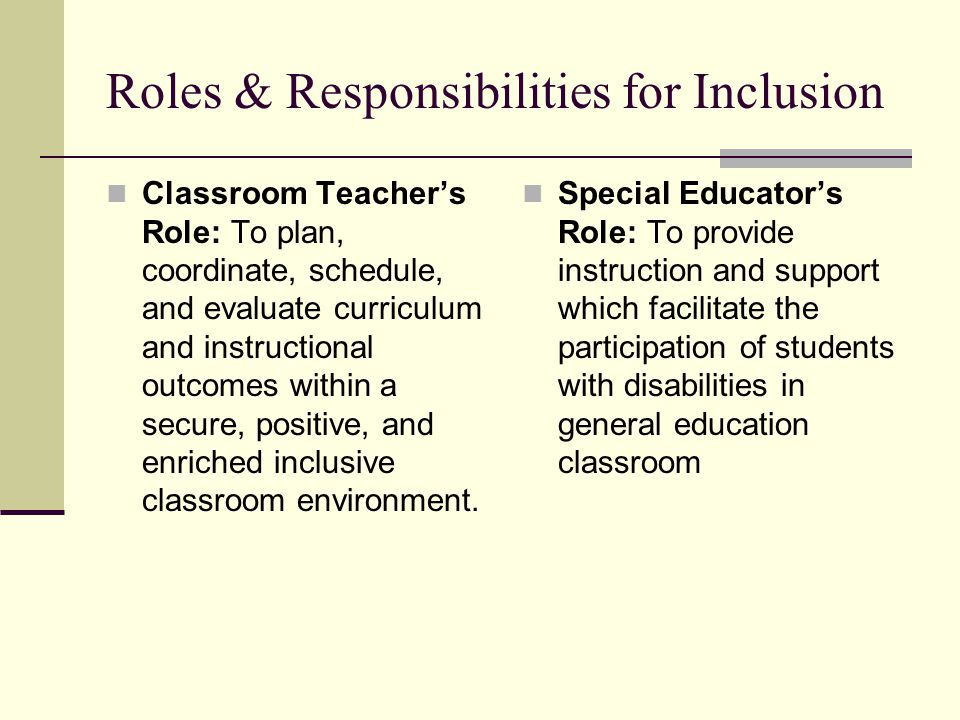 Roles & Responsibilities for Inclusion