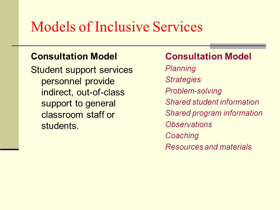 Models of Inclusive Services