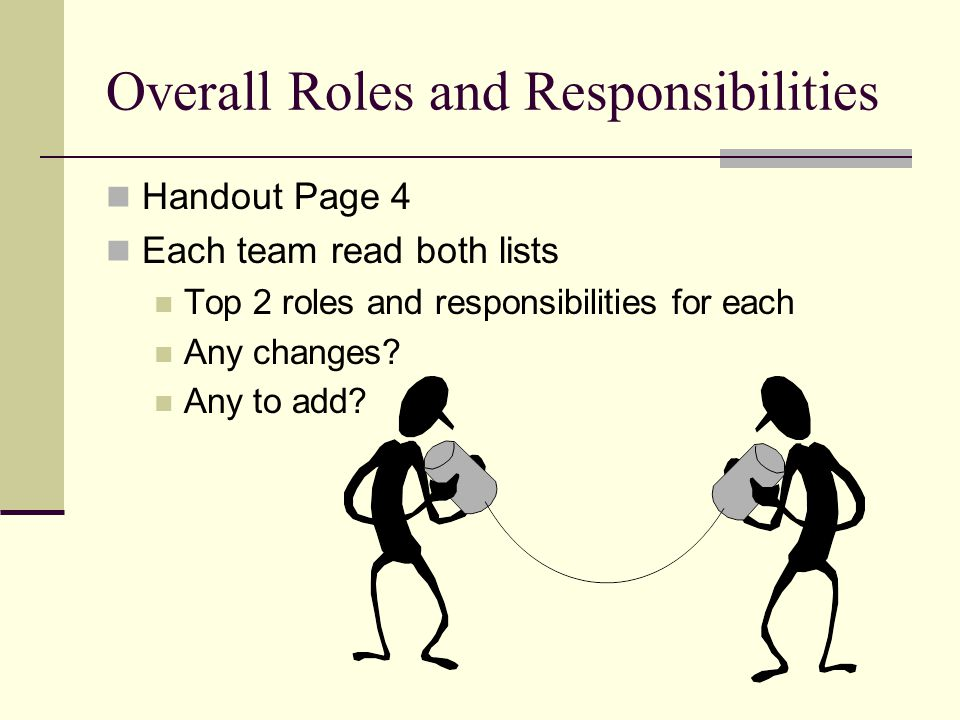 Overall Roles and Responsibilities