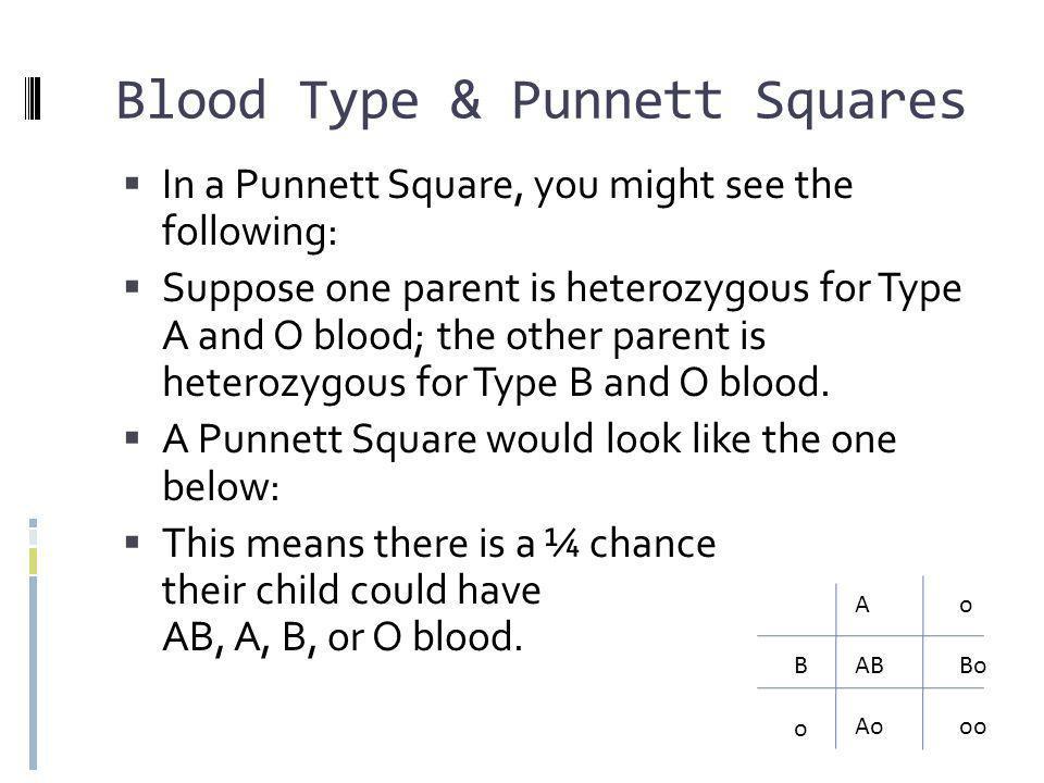 Blood Type & Punnett Squares
