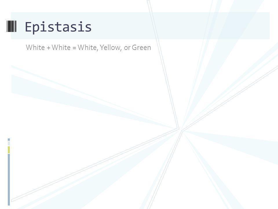 Epistasis White + White = White, Yellow, or Green