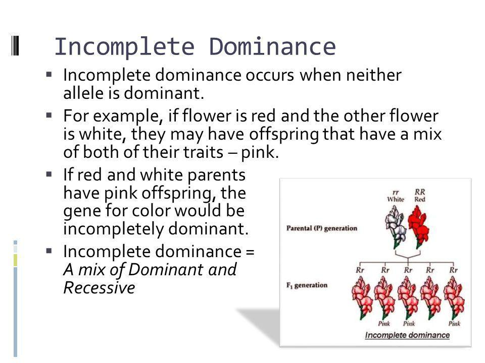 Incomplete Dominance Incomplete dominance occurs when neither allele is dominant.