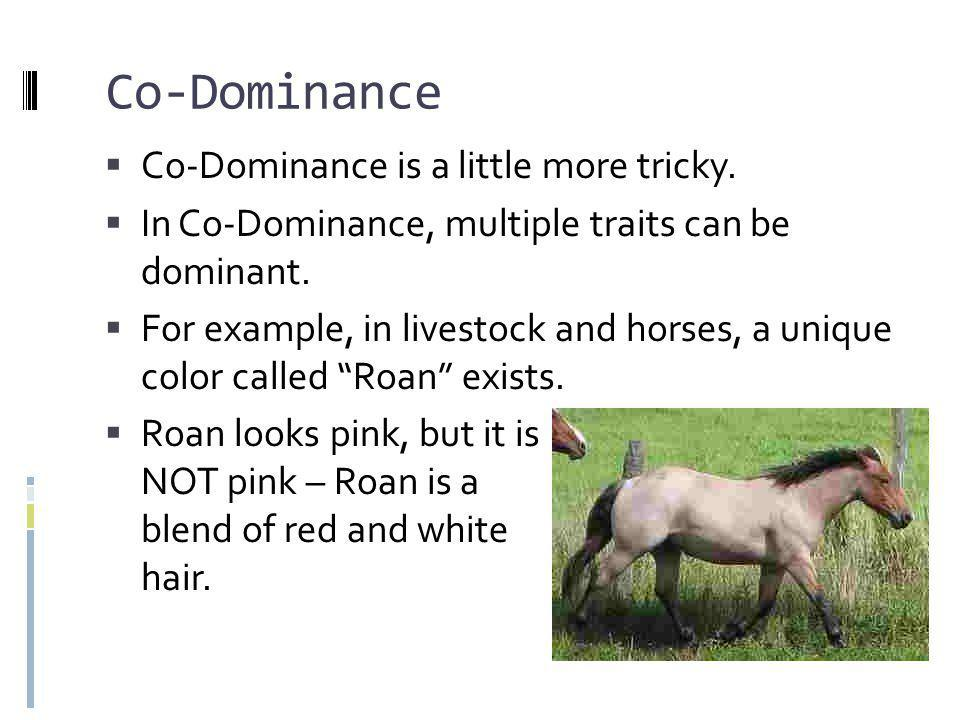 Co-Dominance Co-Dominance is a little more tricky.