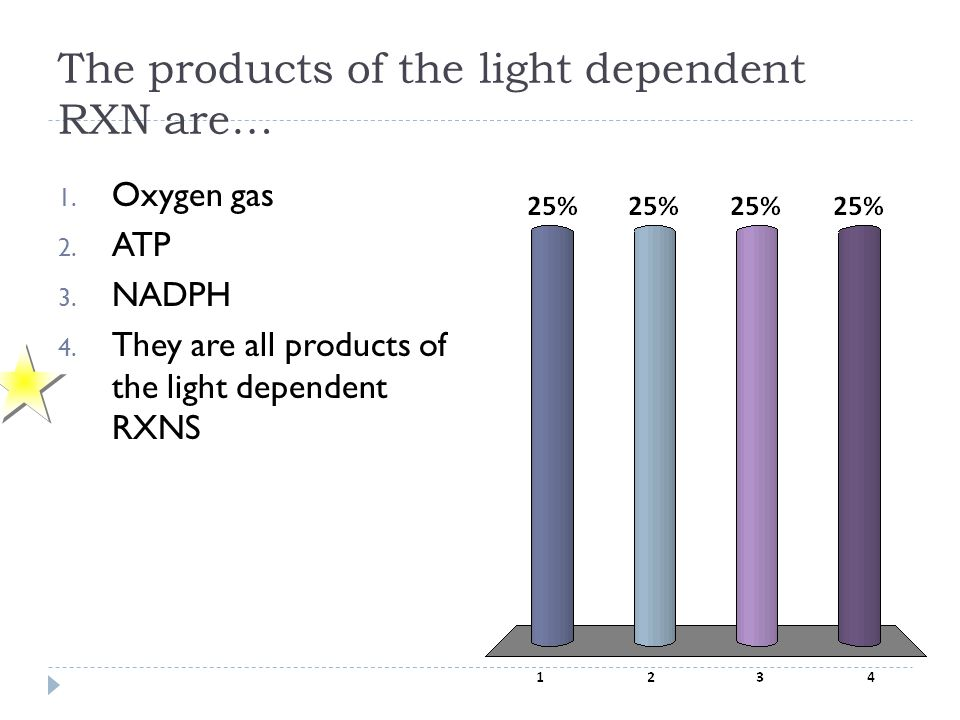 The products of the light dependent RXN are…