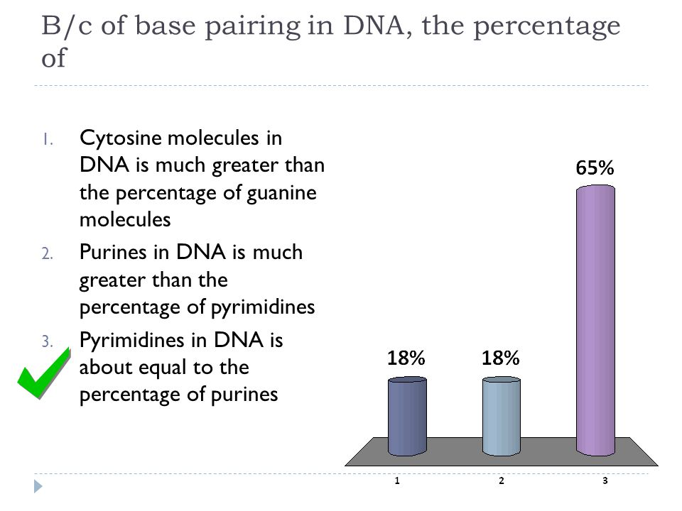 B/c of base pairing in DNA, the percentage of